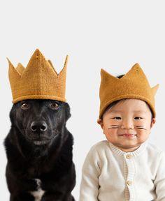 Cadela e bebê