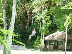 zip lining in Jamaca, something were planning on do while were their.  :)