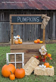 63 ideas for photography props kids lemonade stands Halloween Fotos, Photo Halloween, Halloween Mini Session, Halloween Signs, Pumpkin Patch Birthday, Pumpkin Patch Party, Deco Haloween, Fall Photo Booth, Diy Photo Booth Props
