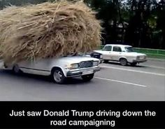 Donald Trump driving down the road...