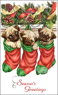 "Pug Christmas Holiday Cards are 8 1/2"" x 5 1/2"" and come in packages of 12 cards. One design per package. All designs include envelopes, your personal message, and choice of greeting. Select the greeting of your choice from the drop-down menu above. Add your personal message to the Comments box during checkout."