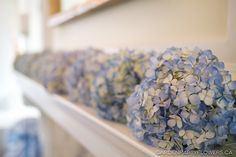 bouquets with hydrangea gardenpartyflowers.ca