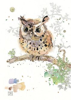 Eared Owlet - Owl Art by Jane Crowther, Bug Art greeting cards.