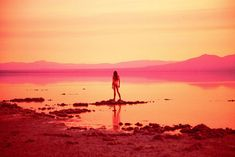 """This past month, Galerie Perrotin, Hong Kong, presented """"Vertical Color of Sound"""", an exhibition by Ryan McGinley featuring a selection of. Ethereal Photography, Abstract Photography, Photography Ideas, Wedding Photography, Salton Sea, Desert Dream, Nyc Photographers, Summer Dream, Pink Art"""