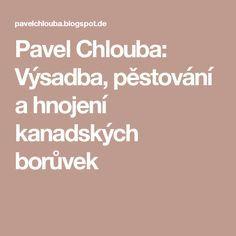 Pavel Chlouba: Výsadba, pěstování a hnojení kanadských borůvek Pavlova