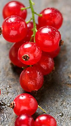 Red Grape Macro #iPhone #6 #plus #Wallpaper
