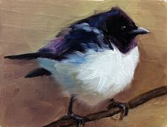 Spréo améthyste peinture de l'oiseau édition par shaunafinnart