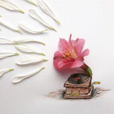 Flower Gramophone - Kristián Krensa - mrkriss.com