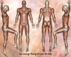 How massage therapists view the body