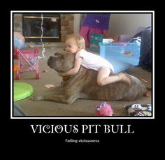 Who really started saying that pit bulls are dangerous and vicious? #pitbulls #animals #dogs