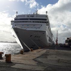 MSC Sinfonia -Cape Town Harbour Cape Town, Cruise, Ships, Boat, Explore, Travel, Boats, Dinghy, Viajes