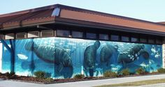 wyland art | Artist Wyland, joined by artist Guy Harvey, just finished autographing ...