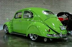 Skirted bug