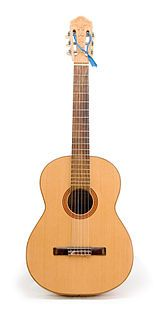 Guitar/Different Types of Guitars - Wikibooks, open books for an open world