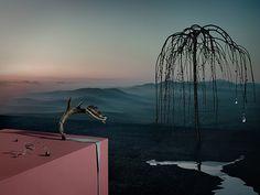 so surreal - Kila and Rusharc