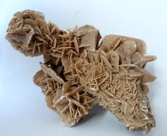 """SELENITE (Calcium Sulfate) from Mexico. Large platy crystals that incorporate sand are typical of this gypsum variety known as """"desert rose"""". The rosette crystal habit tends to occur when the crystals form in arid sandy conditions."""