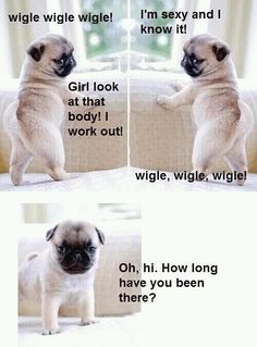 Wiggle, Wiggle, Wiggle, Wiggle, Wiggle... Reminds me of Vicki & Claudia! Love you girls! :) Can't wait for another girls weekend!!