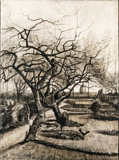The Parsonage Garden at Nuenen in Winter - 1884 - Vincent van Gogh - (Zundert 1853 – 1890 Auvers-sur-Oise)- Medium: pen and brown ink, white heightening on paper Art Van, Van Gogh Art, Vincent Van Gogh, Van Gogh Drawings, Van Gogh Paintings, Tree Drawings, Van Gogh Zeichnungen, Desenhos Van Gogh, Van Gogh Pinturas