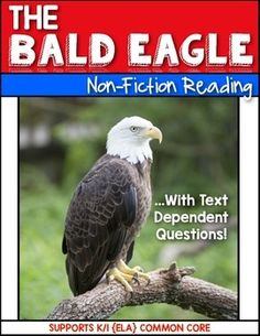 Information text about the bald eagle…short and sweet - perfect for First Grade and Kindergarten students. $