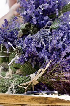 lavender....so gorgeous....