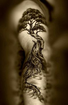 Detailed tree tattoo arm