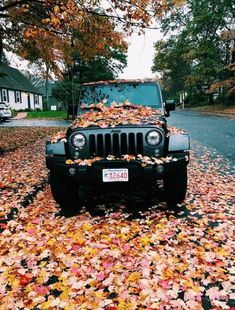 Matte black Jeep Wrangler from Boston enjoying the fall foliage.