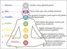 chakras for beginners reiki # Chakra Healing Music, Chakra Mantra, Chakra Meditation, Kundalini Yoga, Meditation Music, Meditation Quotes, Meditation Crystals, 7 Chakras, Chakra Raiz