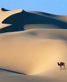Deserto Gobi, Racconti ai confini del mondo #laeffe #laeffered