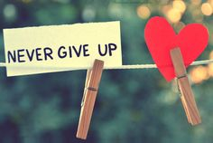 and Love will find you..: Do not give up! Some encouragement for the day!