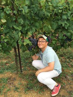 Grazie Jookyung per essere passato a degustare il vino e...l'uva di Poggio al Bosco