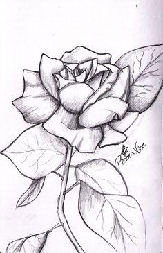 Rose Drawings In Pencil | simple rose from my sketchbook. Enjoy :3