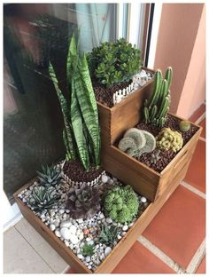 Composición cactus y suculentas - My site 40 magical side yard and backyard gravel garden design ideas 43 Related 60 Suprising Indoor Garden Apartment Design Ideas For Summer Do you have a dream garden in mind but can't seem to find the space to make t House Plants Decor, Patio Plants, Garden Plants, Indoor Plants, Garden Cactus, Balcony Garden, Flowers Garden, Indoor Cactus, Herb Garden