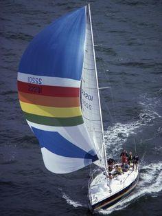 size: Photographic Print: Sailboat with A Colorful Sail Poster : Transportation Sailing Regatta, Sailing Trips, Beautiful Ocean, Sail Away, Open Water, Digital Technology, Scuba Diving, Framed Artwork, Nautical