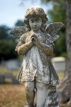 Angel statue from a recent photo shoot at Historic Oakwood Cemetery, Raleigh, NC Cemetery Angels, Cemetery Statues, Cemetery Art, Angel Statues, Statue Ange, Oakwood Cemetery, Old Cemeteries, Graveyards, Padre Celestial