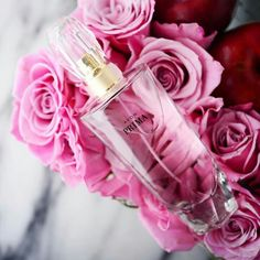 Leave an unforgettable impression with Avon Prima, featuring a chic blend of plum, rose and white patchouli. www.youravon.com/hlenox