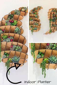 Beautiful design for Indoor greenery #indoorplants #laser #plants #affiliate