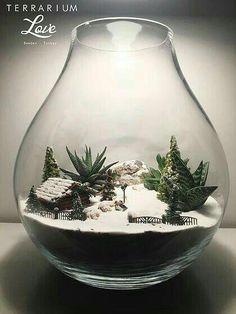 Mahmut Kırnık.1998 #TerrariumIdeasCoffeeTable Terrarium Cactus, Terrariums Diy, Terrarium Scene, Large Terrarium, Cactus House Plants, Glass Terrarium, Terrarium Ideas, Mini Mundo, Paludarium