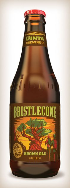 Bristlecone Brown Ale label and bottle design for Uinta Brewing Company, Salt Lake City, Utah