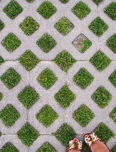grassy paving - put mother-of-thyme or other low-growers that don't need mowing, and use it for parking lots instead of asphalt. Most wil survive. What doesn't - put asphalt there only. And you will end up with a less heated, more water-absorbent surface, much healthier and greener.