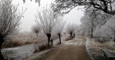 SWALKJE TROCH DE ALDE FEANEN (10 km of 18 km) Zwerven door De Oude Venen. Verscholen in het hart van Friesland ligt een prachtig, 4000 h...