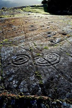 Achnabreck, a horned spiral, Cairnbaan, Scotland. The largest expanse of rock art in Great Britain, with rings, cups, and gutters, as well as some curious motifs like this horned spiral.