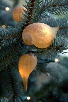 Beach themed lighting: Shells on a strand of white lights. Christmas Lights, Christmas Holidays, Christmas Crafts, Christmas Ornaments, Beach Christmas Trees, Christmas Wood, Christmas Tables, Coastal Christmas Decor, Nautical Christmas