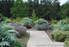 The Oregon Garden - Harmony in the Garden