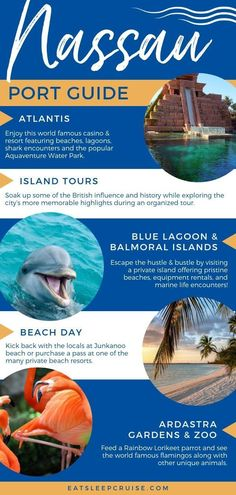 NEW Port Guide! If your next cruise is visiting the Bahamas, have a look at our updated list of the Best Things to Do in Nassau Bahamas on a Cruise. Bahamas Vacation, Bahamas Cruise, Nassau Bahamas, Cruise Port, Cruise Travel, Cruise Vacation, Italy Vacation, Honeymoon Destinations, Cruises