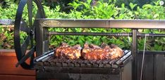 Grilled Beef Ribs, Beef Steak, Barbecue Recipes, Bbq, Argentine Grill, Gaucho, Smoking Meat, Served Up, Steaks