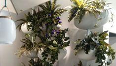 Modulárny prvok pre stavbu zelených vertikálnych stien, ktorý môže byť použitý aj ako dekoratívny prvok. Vhodné nielen pre vnútorné, ale aj pre  vonkajšie použitie. #garden #verticalgraden #zelenstena #flower #plant #kvety #rastliny #vertikalnazahrada #interior #interiordesign #design #flowerpot #kvetinač #serralunga #alvex  Skladá sa z samonosnej hliníkovej tyče, na ktorej je možné v požadovanej výške zavesiť 4 živicové kvetináče vyrobené rotačným lisovaním. Christmas Wreaths, Gardening, Holiday Decor, Green, Plants, Home Decor, Decoration Home, Room Decor, Lawn And Garden