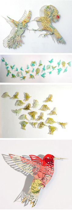 birds cut out of maps
