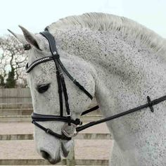 Anatomically designed headpiece, padded and shaped to relieve pressure on ears. Noseband shaped to relieve pressure with double adjustment for perfect fit. Wave browband sits comfortably with the shape of the brow. Includes smooth feel rubber reins with stitch detail, please note that the bridle bad