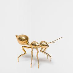 DECORATIVE GOLDEN ANT - Accessories - Decoration | Zara Home United States of America