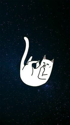 Ripndip nermal Wallpapers chidos